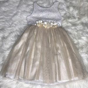 Bloome Girls Size 8 Shimmer Sparkle Lace Dress